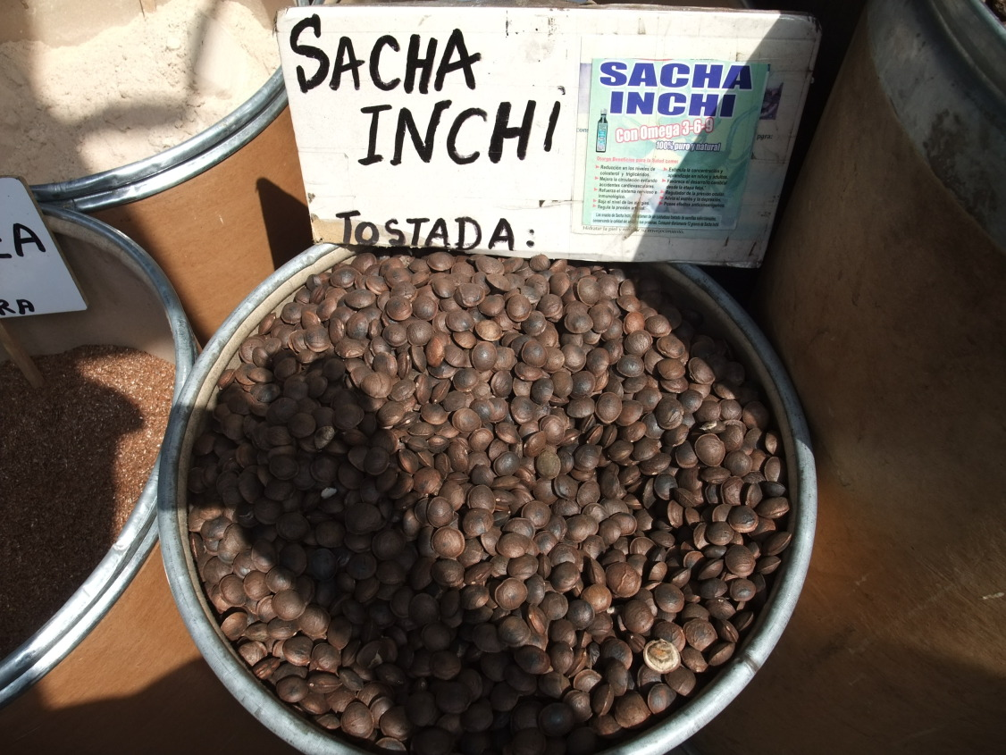 Sancha Inchi fruit
